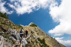 Migliori amici che fanno un'escursione su un pendio alpino splendido un giorno di estate soleggiato immagini stock