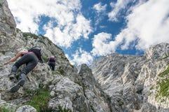 Migliori amici che scalano montagna alpina Fotografia Stock