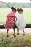 Migliori amici felici che giocano nel parco di estate fotografia stock libera da diritti