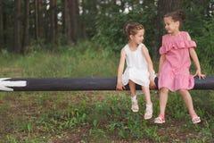 Migliori amici felici che giocano nel parco di estate immagine stock libera da diritti