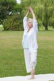 Migliori donne del ager che praticano 'chi' del tai della formica di yoga Fotografia Stock Libera da Diritti