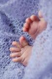 Mignoli del piede di un neonato su fondo lilla Fotografie Stock Libere da Diritti