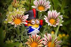 Mignon i gräset Royaltyfria Bilder
