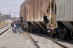 Migranten im Tier Stockbilder