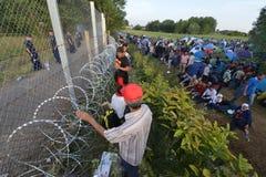 Migranter från Mellanösten som väntar på den ungerska gränsen Arkivbild