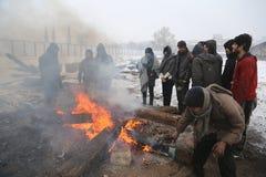 Migranter i Belgrade under vinter Royaltyfri Fotografi