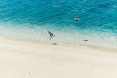 Migrating Birds on tropical Island. Two small migrating birds living in summer in antarctica and flying in winter to pacific ocean. Seen on Cook Islands &#x28 Stock Photos