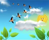 Migrerende vogels die op de hemel vliegen Royalty-vrije Stock Foto's