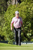 Miguel Angel Jimenez - NGC2010 Royalty Free Stock Images