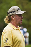 Miguel Angel Jimenez - Side Profile Royalty Free Stock Image