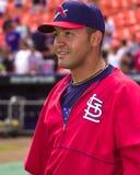 Miguel Cairo, St Louis Cardinals Imagem de Stock Royalty Free