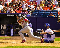 Miguel Cairo, St. Louis Cardinals Stock Photography