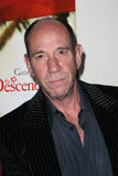 Miguel Ferrer. At The Descendants Premiere, Academy of Motion Picture Arts and Sciences,  Los Angeles, CA 11-15-11 Royalty Free Stock Image