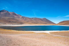 Miñiques lagoon in San Pedro de Atacama, Chile Stock Photography