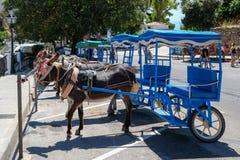 MIJAS ANDALUCIA/SPAIN - JULI 3: Åsnataxi i Mijas Andalucia Fotografering för Bildbyråer