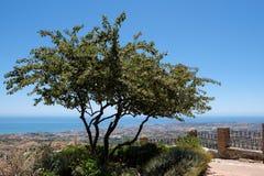 MIJAS ANDALUCIA/SPAIN - JULI 3: Sikt från Mijas i Andalucia Royaltyfria Foton