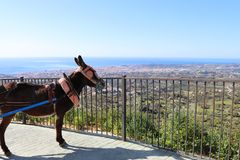 Mijas donkey taxi looking out to the Mediterranean sea and Fueng. A Mijas donkey taxi looks out towards Fuengirola and the Mediterrranean Sea stock image