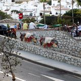 Mijas-Donkeys taxi-Andalusia -EUROPE Stock Images