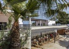 Mijas Spain Donkey Royalty Free Stock Photography