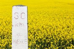 Mijlpaal 30 kilometers van Aarhus met raapzaadgebied op achtergrond royalty-vrije stock afbeeldingen