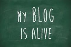 Mijn blog is levende uitdrukking vector illustratie