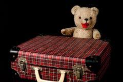 Mijn eerste teddybeer stock afbeeldingen