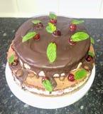 Mijn eigengemaakte cake stock afbeelding
