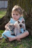 Mijn katjes Royalty-vrije Stock Fotografie