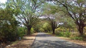 Mijn Klik in Ramapattinam, Pollachi, Tamilnadu stock fotografie
