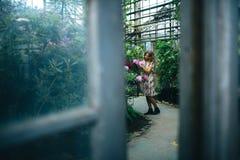 Mijn mooie tuin Stock Afbeeldingen