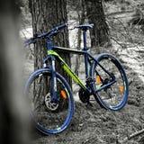 Mijn Mountainbike Royalty-vrije Stock Foto