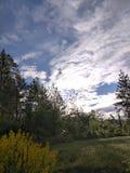Mijn ochtendmening buiten mijn plattelandshuisje stock fotografie