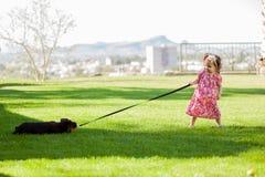 Mijn puppy komt met me Stock Fotografie