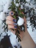 Mijn winter Royalty-vrije Stock Afbeeldingen