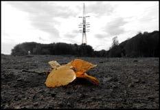 Mijnbouwlandschap Stock Foto's