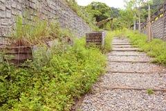 Mijnkarretjes en de Historische Overblijfselen van de Mijnweg die door gras worden behandeld Royalty-vrije Stock Fotografie
