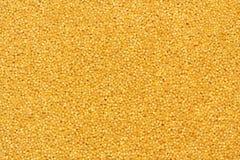Mijo del grano Imagenes de archivo