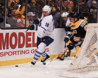 Mike Brown Toronto Maple Leafs stockfotos