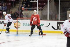 Mike Cammalleri stands beside the net Royalty Free Stock Photography