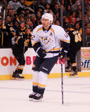 Mike Fisher, Nashville Predators. Nashville Predators forward Mike Fisher #12 Stock Photography