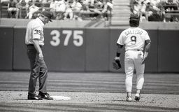 Mike Gallego, Oakland Athletics Photo libre de droits