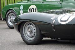 Mike Hawthorn 1955 Jaguar D-type. Royalty Free Stock Photography