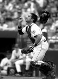 Mike Piazza New York Mets royalty free stock photography