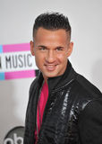 Mike Sorrentino Stock Image