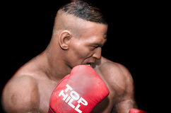Mike Tyson immagine stock