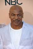 Mike Tyson στοκ φωτογραφίες