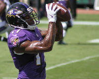 Mike Wallace. Baltimore Ravens WR Mike Wallace #17 Stock Photos