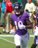 Mike Wallace. Baltimore Ravens WR Mike Wallace #17 Royalty Free Stock Photo