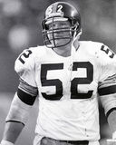 Mike Webster Stock Image