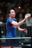 MIKHAILOVA Polina from Russia on serve Stock Images
